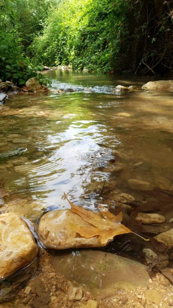 מים זורמים בנחל כזיב