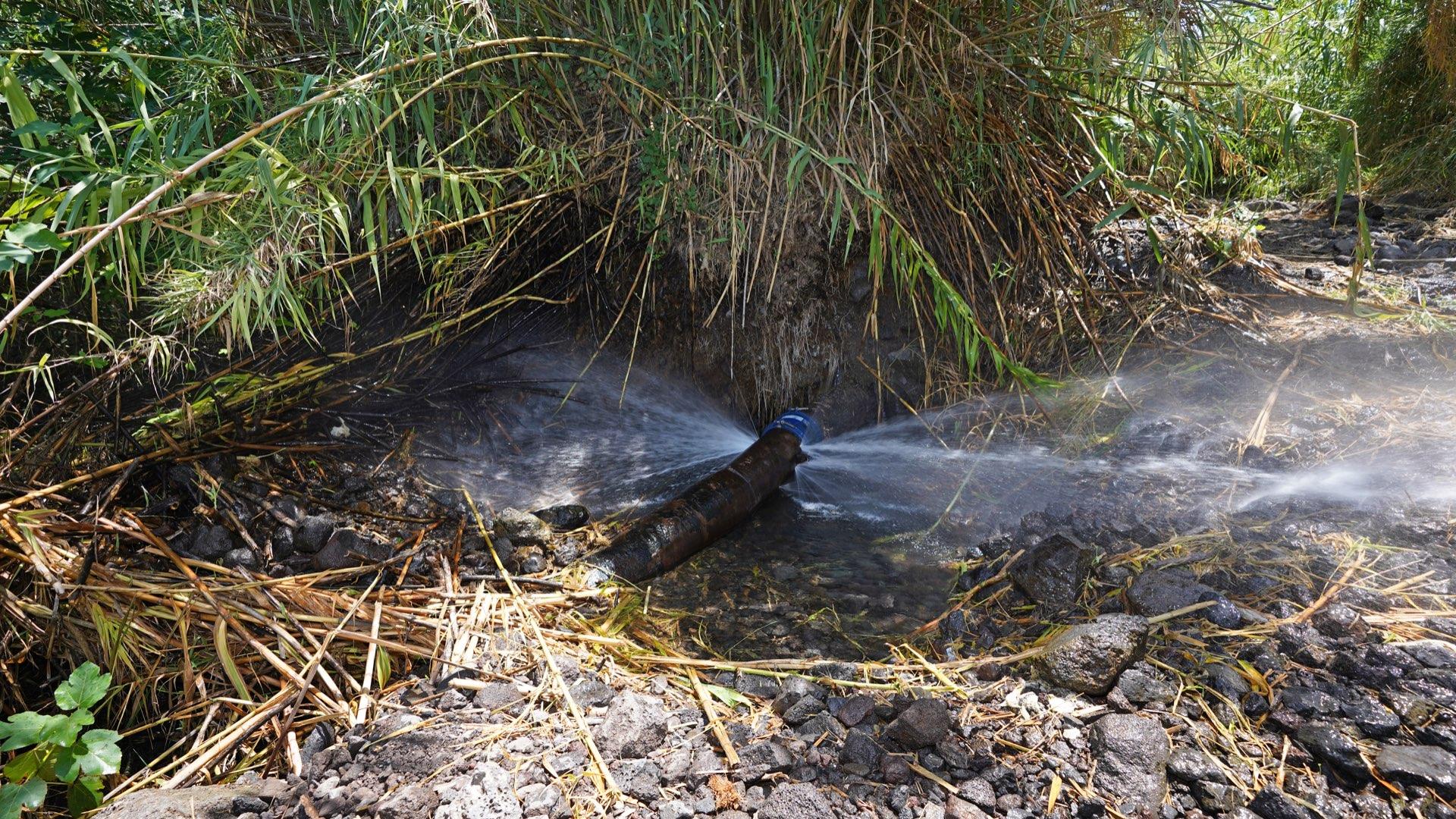 פיצוץ בצינור השקיה בעין דבשה. צילום: יובל דקס